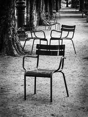 Alle de chaises (jeanfenechpictures) Tags: park city trees blackandwhite paris garden town chairs noiretblanc jardin arbres walkways tuileries parc chaises alle parisjetaime captiale