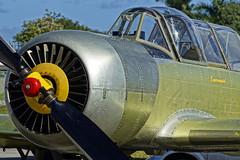 Perry N52CY-108 Yak-52 JTPI 8x12 2324 (JTOcchialini) Tags: club pembroke airport wings florida wheels north pines hollywood perry miramar aero 2016