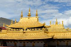 -250.jpg (Fzz7) Tags: china tibet d800   nikon70200f4 summer2015