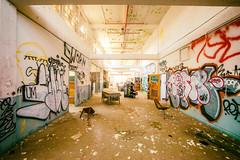 Enchanting (Thomas Hawk) Tags: california usa abandoned america graffiti unitedstates unitedstatesofamerica eastbay vallejo mareisland