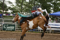 Blythewood Rodeo 2016-63 (Perry B McLeod) Tags: sc cowboys barrel bull racing bulls riding rodeo cowgirl calf saddle bronc blythewood roping ipra