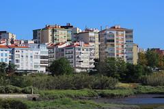 Moiss Santiago  (3) (Moiss Santiago) Tags: santiago de flamingo moises moinho mar corroios moisessantiago 01062016