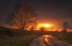 The Glowing Lane (Captain Nikon) Tags: sunset reflections mood derbyshire explore explored stantonbydale nikond7000 nomanslane