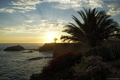 Lovely Laguna.... (Joe Hengel) Tags: ocean california ca blue sunset sea orange cliff seascape beach water beautiful beauty yellow clouds golden seaside waves glow outdoor bluesky palm palmtrees pacificocean socal palmtree southerncalifornia orangecounty oc seashore goldenhour lagunabeach pergola goldenstate beachocean cloudsbluesky goffisland cloudsstormssunsetssunrises goffislandbeach cloudsorangecounty