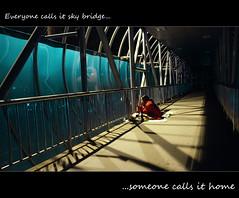 Everyone call it a brigde....someone calls it home (iKhoai) Tags: fujinon x100 langthang