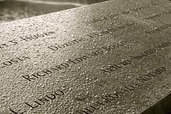 9/11 Memorial (L'essentiel est invisible pour les yeux.) Tags: nyc newyork skyscraper memorial downtown manhattan worldtradecenter 911 center financialdistrict twintowers wtc lower financial groundzero 911memorial downtownmanhattan