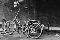 Bike (CeciliaBrera) Tags: bw bike biancoenero bicicletta abigfave nikond90 universitpavia ceciliabrera