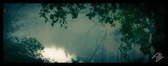Misty River (Phil 22) Tags: mist misty vintage river 22 pentax rivire reflexion reflets brume ctesdarmor leguer k200d tonqudec kerguiniou