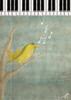 طير ~ (~Haifa) Tags: bird piano طير بيانو