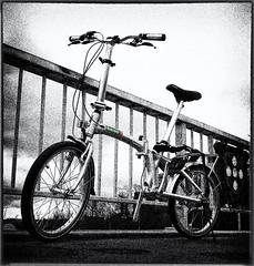 beixo bike hint of color (Studio Skwit) Tags: blackandwhite bw cute clouds studio naked cycling cool little small transport fietsen biko fiets facebook vouwfiets hintofcolor beixo gentenaar startcafe skwit stevensquid