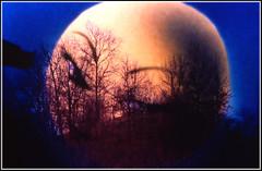 Romantica luna. (GioKer1) Tags: foto fotografie luna ricordi diapositive immagini romanticismo effetto sovrapposizione