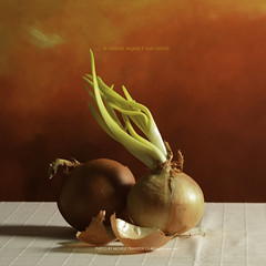 red passion (michele franzese) Tags: red stilllife onions rosso supershot magicunicornverybest magicunicornmasterpiece