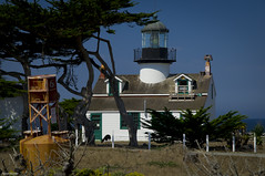 Point Pinos Lighthouse (figmentfan84) Tags: california lighthouse coast deer pacificocean cypress pacificgrove pointpinos pointpinoslighthouse