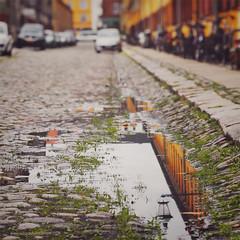 """You can't tell how deep a puddle is until you step into it"" (www.juliadavilalampe.com) Tags: urban wet rain copenhagen denmark puddle farola dof streetphotography bikes danmark barrio regen scandinavian"