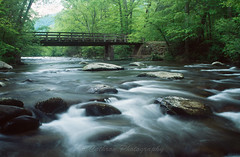 One Lane Bridge in Metcalf Bottoms (John Cothron) Tags: longexposure bridge film nature water rock creek 35mm river landscape morninglight spring stream outdoor tennessee filter flowing woodbridge cpl freshwater gatlingburg littleriver fujivelvia50 canoneos3 seviercounty greatsmokymountainnationalpark rvp50 metcalfbottoms canonef24mmf14l johncothron cothronphotography weargaproad 2jtrip2008 johncothron 35001108080501