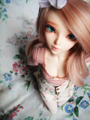 (nenstra) Tags: asian doll chloe bjd balljointeddoll enchanteddoll mnf andreja leeke pinkcocktail leekeworld minifee plumeblanche sweety48
