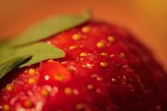strawbs (susivinh) Tags: macro strawberry beatles monday strawberryfields lunes fresa soundtrackmonday