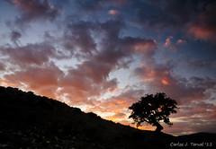 Atardecer en los Royos (Only Raw) (Carlos J. Teruel) Tags: sol atardecer nikon paisaje murcia cielo nubes d300 caravaca filtros 2011 xaviersam singhraydarylbensonnd3revgrad onlyraw carlosjteruel