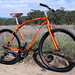 Muse Cycles Rhythm 29er