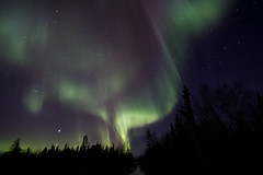 Aurora Hunting (nwtarcticrose) Tags: sky night lights over nwt aurora nightsky northwestterritories northern wintersky northernlights auroraborealis yellowknife yellowknifenorthernlights yellowknifeyellowknifeauroraborealis auroraborealisoveryellowknife northwestterritoriesaurora northwestterritoriesnorthernlights valpondphotography