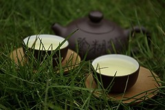 Morning Tea for Two (hommik) Tags: morning grass drops estonia tea zen yixing tee aegna hommik welcometoestonia wulongcha