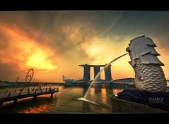 Marina Bay Sunrise (Charlz Photography) Tags: nature marina sunrise lights bay singapore dusk lion area sands merlion
