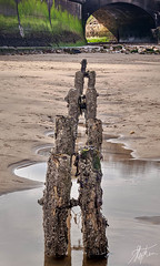 Show Me the Way (Pixelda) Tags: groynes sandsend pixelda
