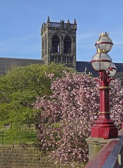 A Bridge And Blossom (Bricheno) Tags: bridge lamp abbey river scotland blossom escocia paisley szkocja schottland scozia cosse paisleyabbey  esccia   bricheno scoia