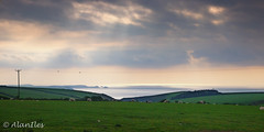 Panorama north Cornwall coast (Alan Iles) Tags: panorama west clouds downs wire cornwall sheep cloudy telephone north delabole rumps