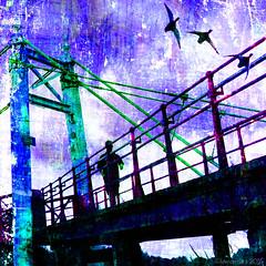 The Crossing (Lemon~art) Tags: bridge man texture birds thames river crossing manipulation