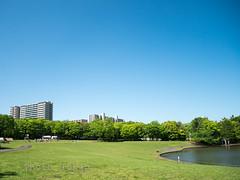 P1120158Lr (photo_tokyo) Tags: japan tokyo jp   tamacenter     tamacentre tamachuoukoenpark