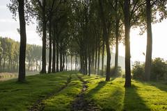 Lapscheure - Belgie (wietsej) Tags: zeiss landscape belgie sony 24 18 lapscheure nex7 sel24f18z