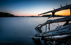 Deadwood (Mika Laitinen) Tags: ocean wood longexposure sea sky seascape nature water rock finland landscape helsinki europe outdoor wideangle calm shore serene fi helsingfors scandinavia deadwood vuosaari uusimaa leebigstopper canon7dmarkii