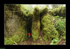 Doline Rocheuse - Bief des Laizines - Dournon - Jura (francky25) Tags: des jura karst franchecomt rocheuse doline bief dournon laizines