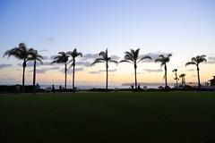 IMG_5093 (Ethene Lin) Tags: sandiego coronado hoteldelcoronado pacificocean