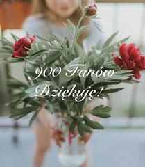 Thank you - to all my followers on Facebook/Flickr/Twitter (ArkadiuszKubiak) Tags: photographer you thank fans appreciate facebook bydgoszcz
