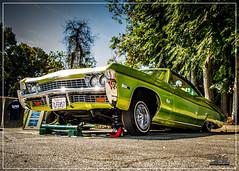 1968 Chevrolet Impala - Kustom Oldies Car Show - Whittier - 2016 (Chris Walker (chris-walker-photography.com)) Tags: california cars chevrolet nikon transportation lowrider classiccars carshow whittier carphotography lowriders 2016 carshows chevroletimpala chriswalker ranflas lowridercars whittiercarshow classiccarsandtrucks 1968chevroletimpala carshowphotography californiacarshows nikond7100 chriswalkerphotography chriswalkerphotographycom whittiercarshows chriswalkercarshowphotography southerncaliforniacarshowphotography whittiercarshowphotography kustomoldiescc kustomoldiesharborchaptercc thecrossingfoursquarechurchcarshow2016