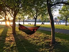 Hammock on the Esplanade ((Jessica)) Tags: sun boston massachusetts newengland hammock esplanade goldenhour