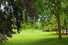 Paris / Parc Monceau (Pantchoa) Tags: paris france parc parcmonceau nature vert arbres gazon nikon 24mmf18ged promenade