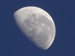 DSC04712 (familiapratta) Tags: sky moon nature iso100 sony natureza cu lua hx100v dschx100v