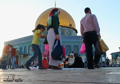 Ramadan in Al Aqsa Sanctaury (TeamPalestina) Tags: heritage beautiful architecture sunrise hope amazing photographer sweet palestine jerusalem domeoftherock blockade ramadan freepalestine alaqsa palestinian occupation goldendome  oldcityjerusalem landscapecaptures