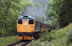 Class 26 038 'Tom Clift' northbound in Newtondale Forest [NYMR] (1) (soberhill) Tags: diesel gala pickering levisham grosmont nymr 2016 northyorkshiremoorsrailway 26038 class26 newtondale tomclift