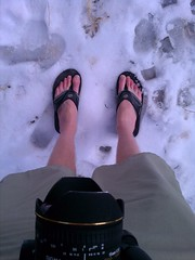 Shorts and flip flops in the snow. Zion National Park. (slworking2) Tags: snow cold feet moblog funny sandals flipflops zion shorts zionnationalpark evo 4g htc sprinthtcevopc36100 pc36100