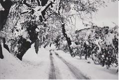 .E' buio. (filofede) Tags: italy white snow black ford film me 50mm pentax super il e neve bianco nero abruzzo chieti teate