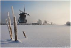 Winter in Kinderdijk (Wim Boon Fotografie) Tags: winter mist cold holland netherlands 7d molen molentocht koud canon1740f4l winterlicht wimzilver molentocht2012 16ºcelciusinkinderdijk