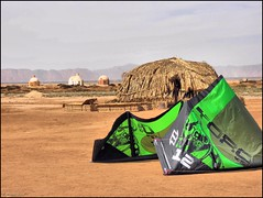 Surf Kite Red Sea El Gouna Egypt (robin denton) Tags: beach redsea egypt kitesurfing beachhut elgouna surfkite