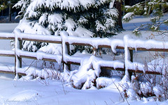"""The snow was endless, . . ."" (misst.shs) Tags: winter snow fence nikon center valley friday sandpoint hff northidaho colburn d90 ~~fencefriday~~ fenchfriday"