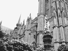 Saint Martin's Church, Ypres (G.Don) Tags: white black church saint lumix cathedral belgium belgie gothic panasonic ieper 17 20mm martins kerk ypres kathedraal