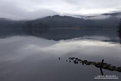 Looking Across Loch Ard (DMeadows) Tags: trees cloud mist lake water misty clouds forest woodland reflections mirror scotland still haze rocks post stones hills loch hazy trossachs aberfoyle kinlochard davidmeadows dmeadows davidameadows dameadows yahoo:yourpictures=waterv2 yahoo:yourpictures=yourbestphotoof2012
