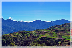 Benguet (Mardonie Cruz) Tags: mountains nature philippines riceterraces cordillera benguet wowphilippines cordilleraadministrativeregion philippineimages myphilippines itsmorefuninthephilippines comevisitmyphilippines philippinestrulyasia